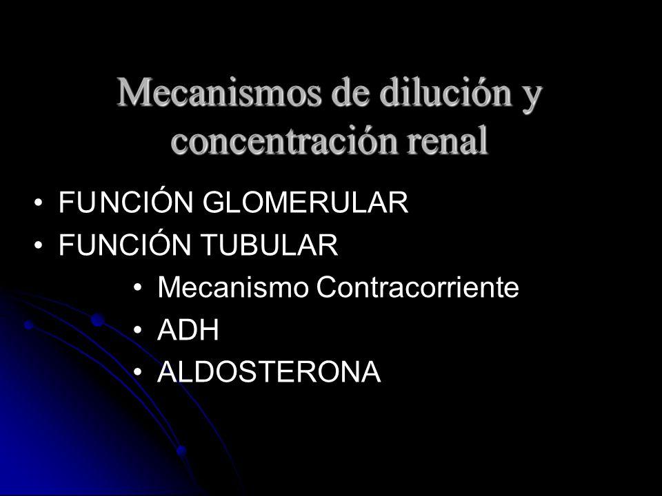 Mecanismos de dilución y concentración renal FUNCIÓN GLOMERULAR FUNCIÓN TUBULAR Mecanismo Contracorriente ADH ALDOSTERONA