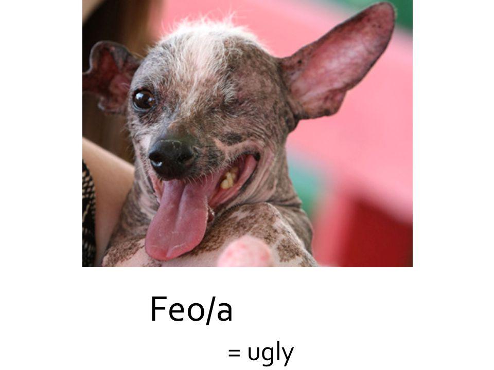 Feo/a = ugly