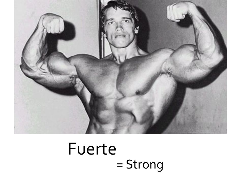 Fuerte = Strong