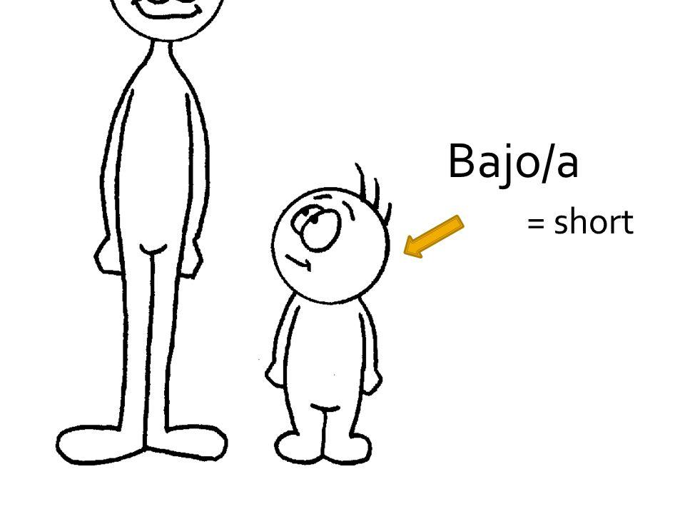 Bajo/a = short