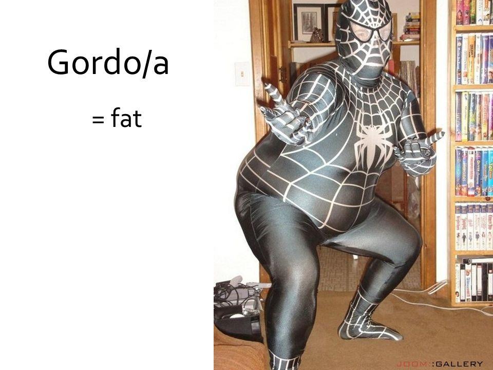 Gordo/a = fat