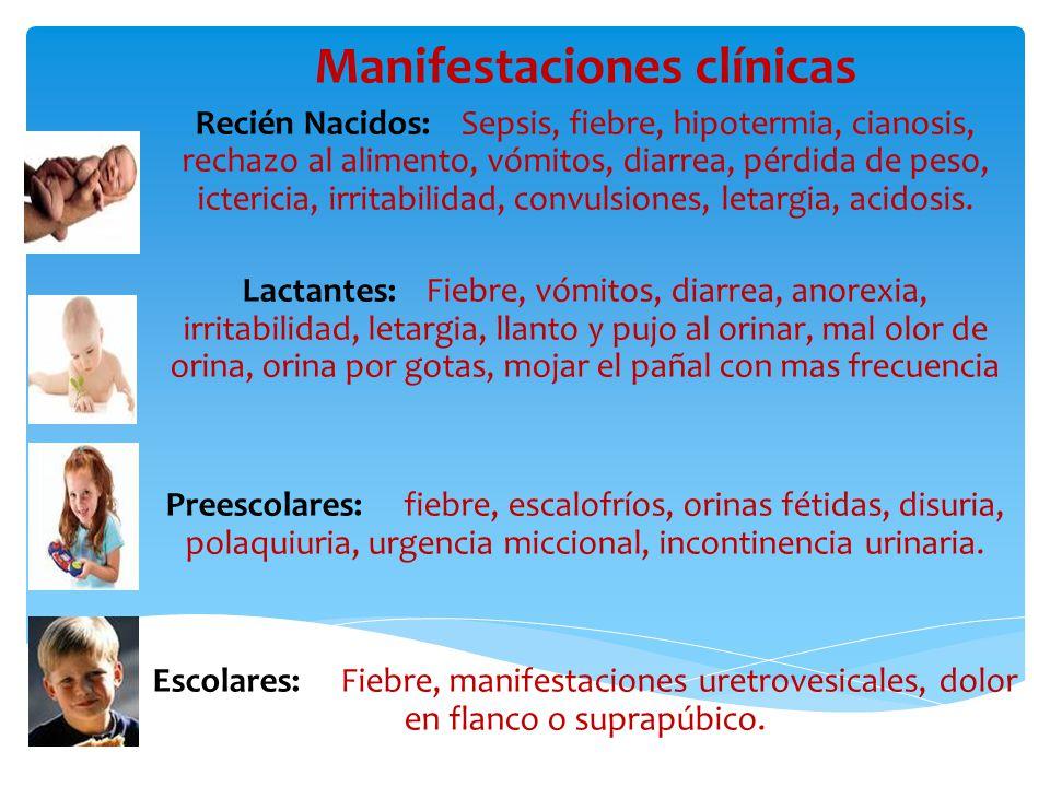 1.Caracteristicas Fisicas:  Color  Olor  Aspecto  Densidad urinaria 2.