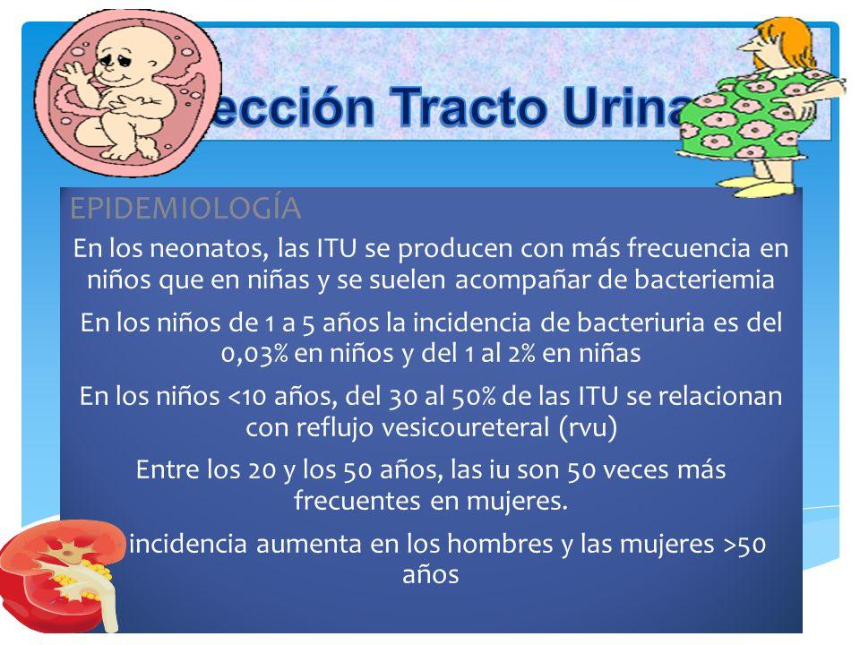 DEFINICION DE INFECCION DEL TRACTO URINARIO.