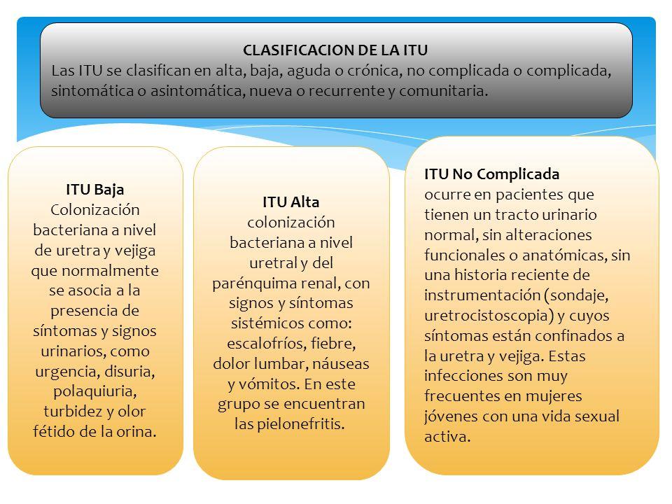 ITU Complicada Ocurre debido a factores anatómicos, funcionales o farmacológicos que predisponen al paciente a una infección persistente o recurrente o a fracaso del tratamiento.