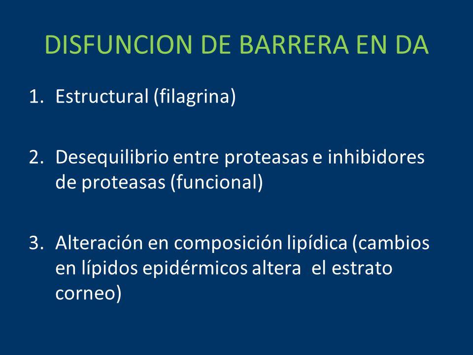 DISFUNCION DE BARRERA EN DA 1.Estructural (filagrina) 2.Desequilibrio entre proteasas e inhibidores de proteasas (funcional) 3.Alteración en composición lipídica (cambios en lípidos epidérmicos altera el estrato corneo)