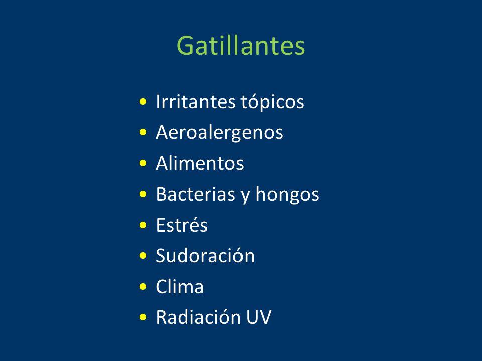 Gatillantes Irritantes tópicos Aeroalergenos Alimentos Bacterias y hongos Estrés Sudoración Clima Radiación UV