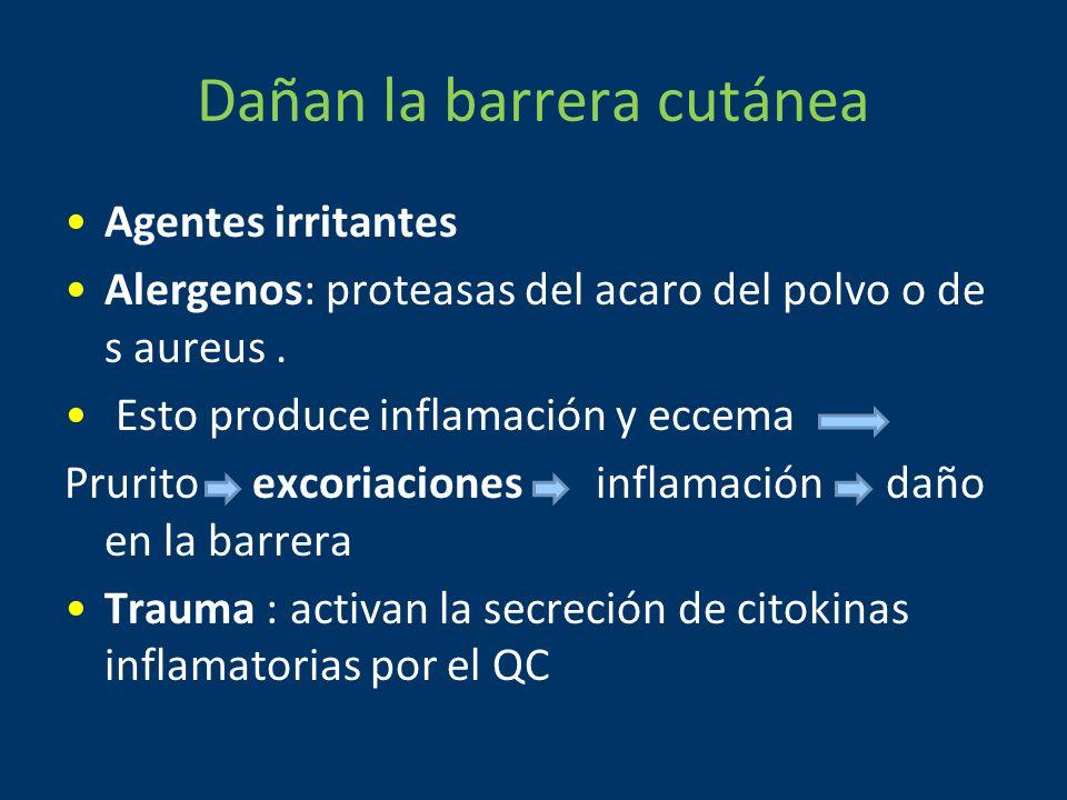 Dañan la barrera cutánea Agentes irritantes Alergenos: proteasas del acaro del polvo o de s aureus.