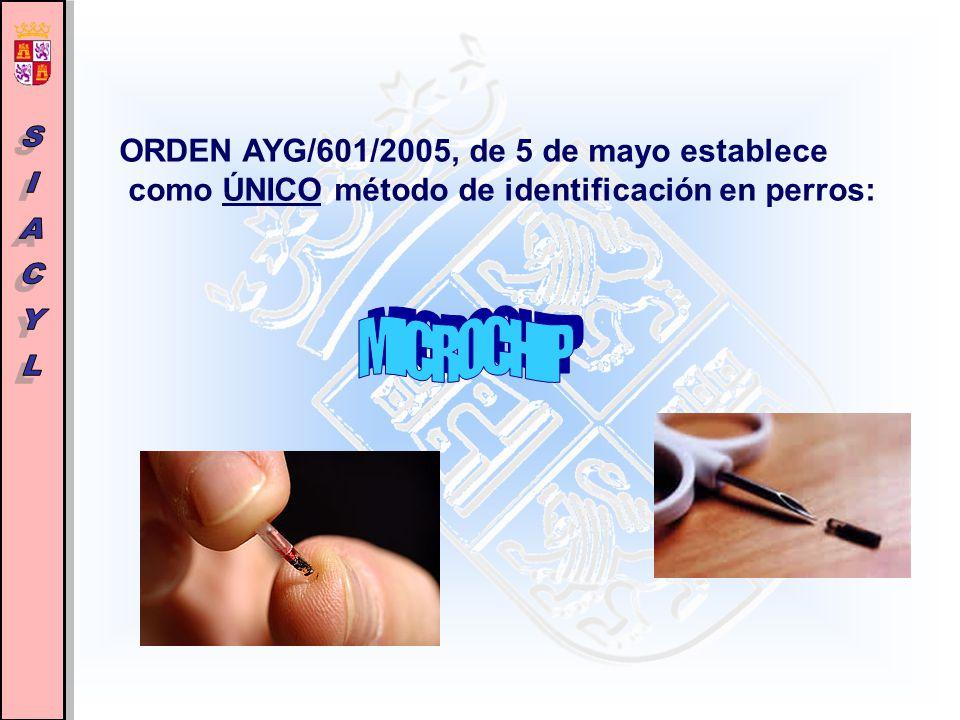 ley 5 2005 de 24 de mayo castilla y: