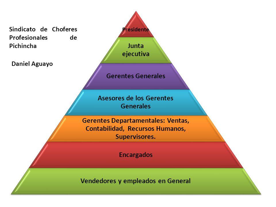 Presidente Junta ejecutiva Gerentes Generales Asesores de los Gerentes Generales Gerentes Departamentales: Ventas, Contabilidad, Recursos Humanos, Supervisores.