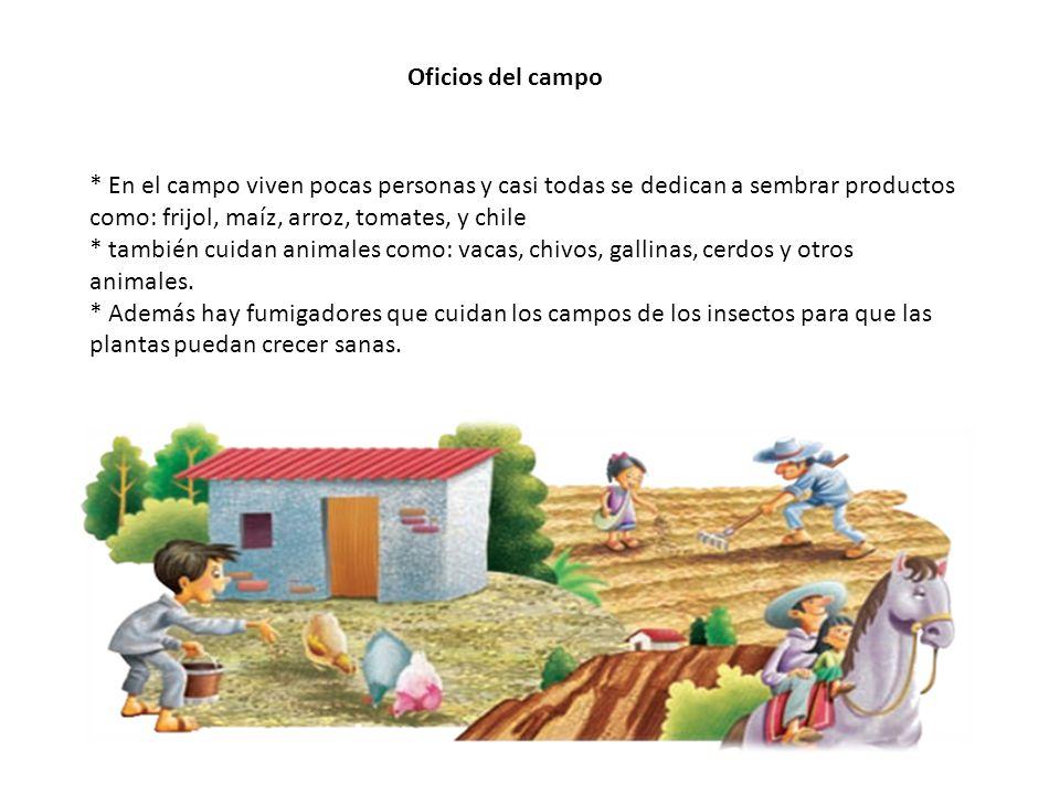 * En el campo viven pocas personas y casi todas se dedican a sembrar productos como: frijol, maíz, arroz, tomates, y chile * también cuidan animales como: vacas, chivos, gallinas, cerdos y otros animales.