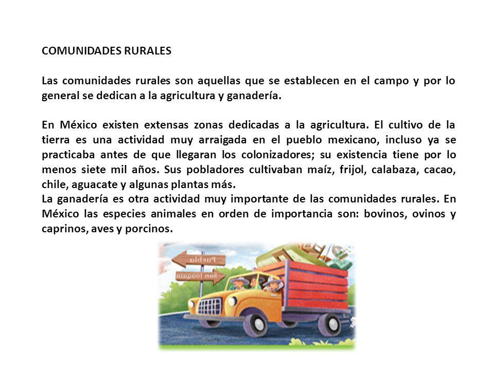 COMUNIDADES RURALES Las comunidades rurales son aquellas que se establecen en el campo y por lo general se dedican a la agricultura y ganadería. En Mé