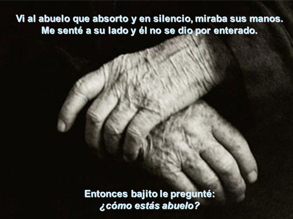 Vi al abuelo que absorto y en silencio, miraba sus manos.