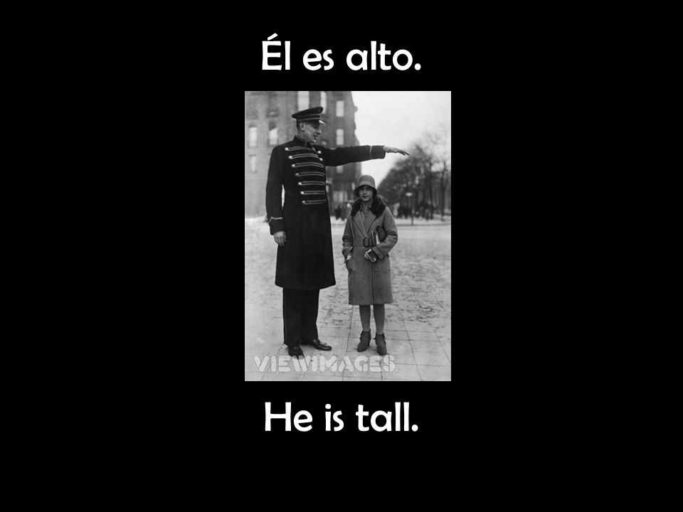 Él es alto. He is tall.