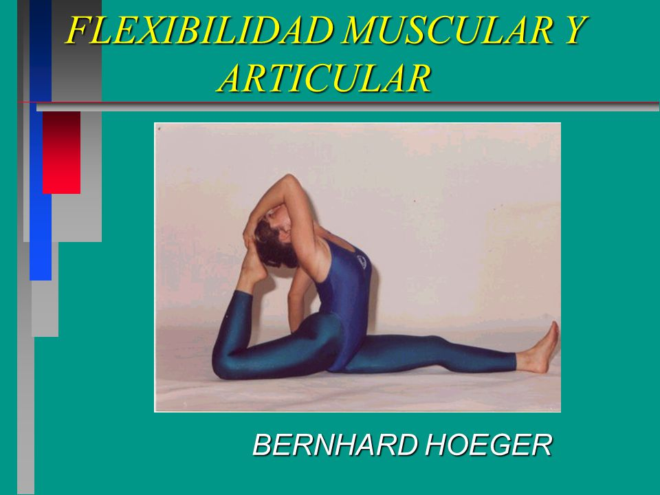 FLEXIBILIDAD MUSCULAR Y ARTICULAR BERNHARD HOEGER