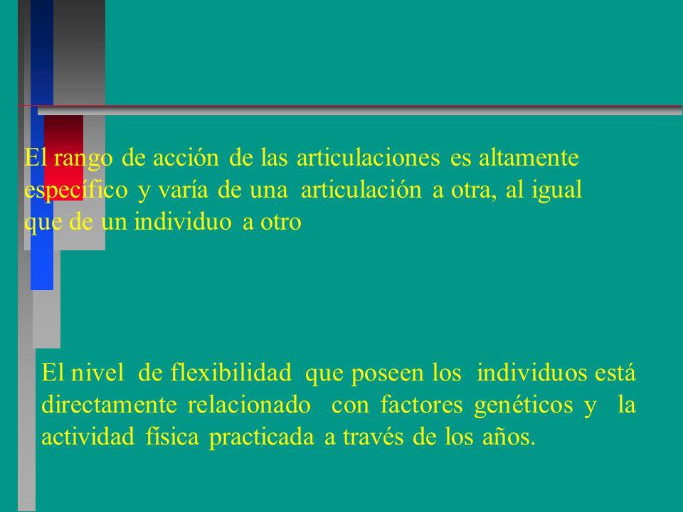 El rango de acción de las articulaciones es altamente específico y varía de una articulación a otra, al igual que de un individuo a otro El nivel de flexibilidad que poseen los individuos está directamente relacionado con factores genéticos y la actividad física practicada a través de los años.