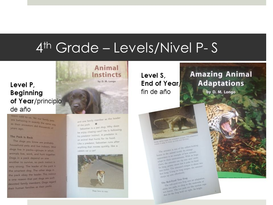 4 th Grade – Levels/Nivel P- S Level P, Beginning of Year/ principio de año Level S, End of Year/ fin de año
