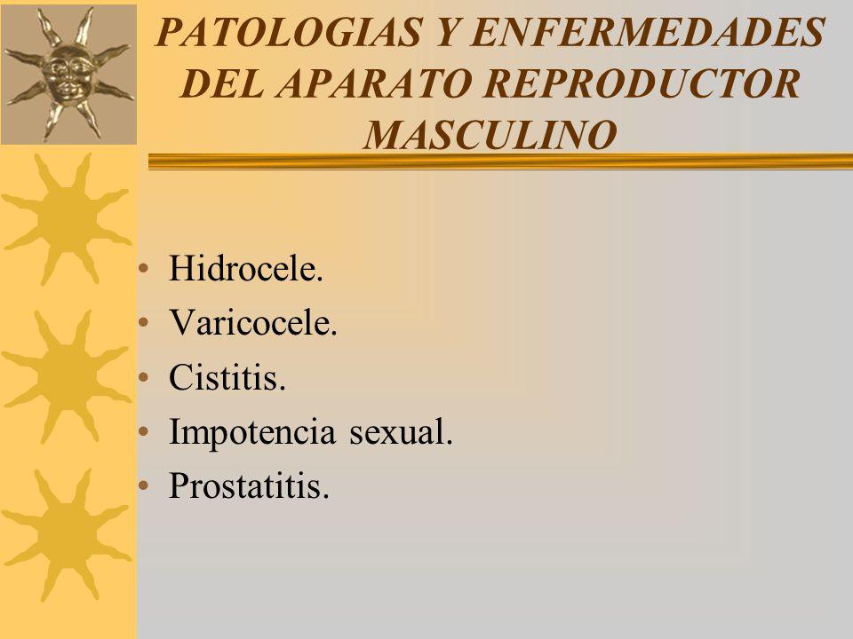 PATOLOGIAS Y ENFERMEDADES DEL APARATO REPRODUCTOR MASCULINO Hidrocele. Varicocele. Cistitis. Impotencia sexual. Prostatitis.