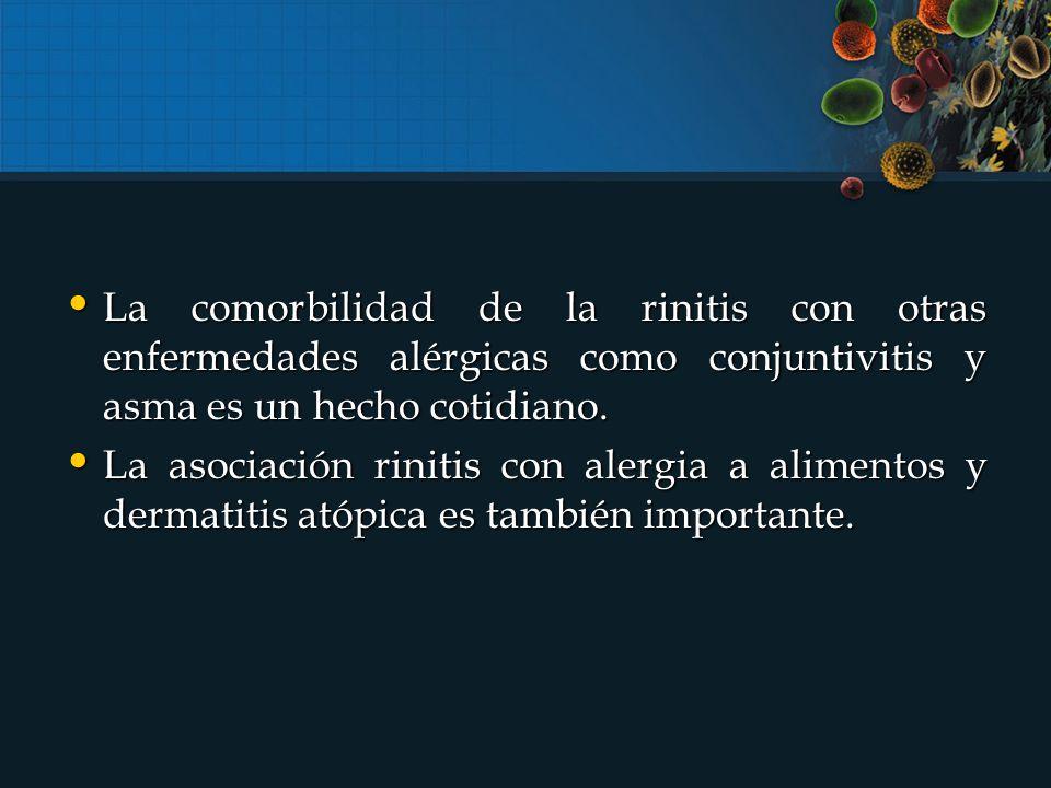 La comorbilidad de la rinitis con otras enfermedades alérgicas como conjuntivitis y asma es un hecho cotidiano.