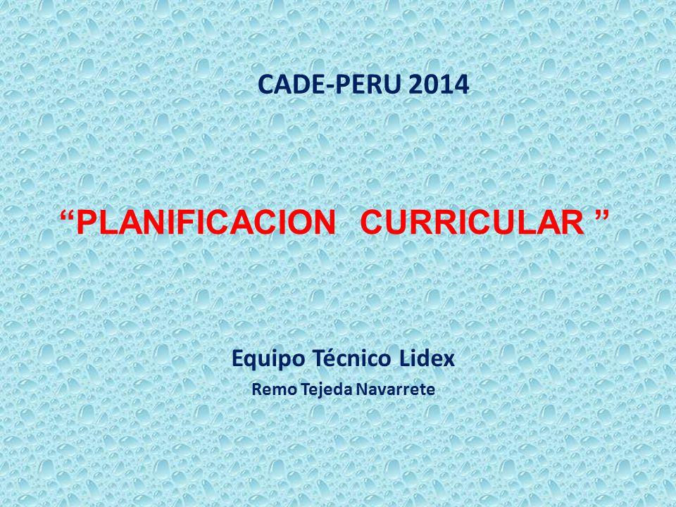 """""""PLANIFICACION CURRICULAR """" Equipo Técnico Lidex Remo Tejeda Navarrete CADE-PERU 2014"""