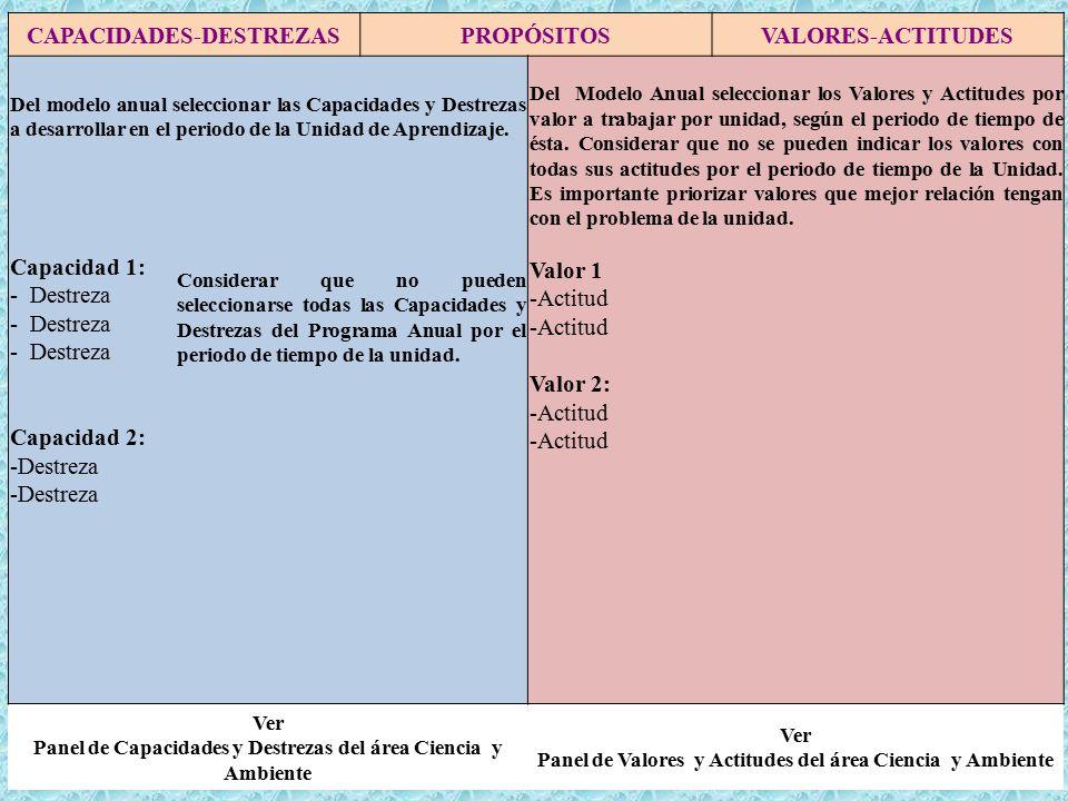 CAPACIDADES-DESTREZASPROPÓSITOSVALORES-ACTITUDES Del modelo anual seleccionar las Capacidades y Destrezas a desarrollar en el periodo de la Unidad de