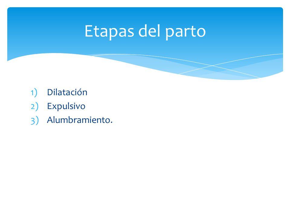 1)Dilatación 2)Expulsivo 3)Alumbramiento. Etapas del parto