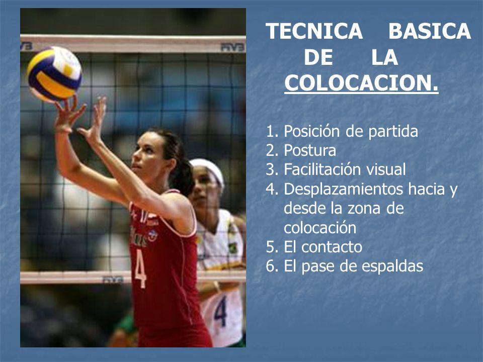TECNICA BASICA DE LA COLOCACION.