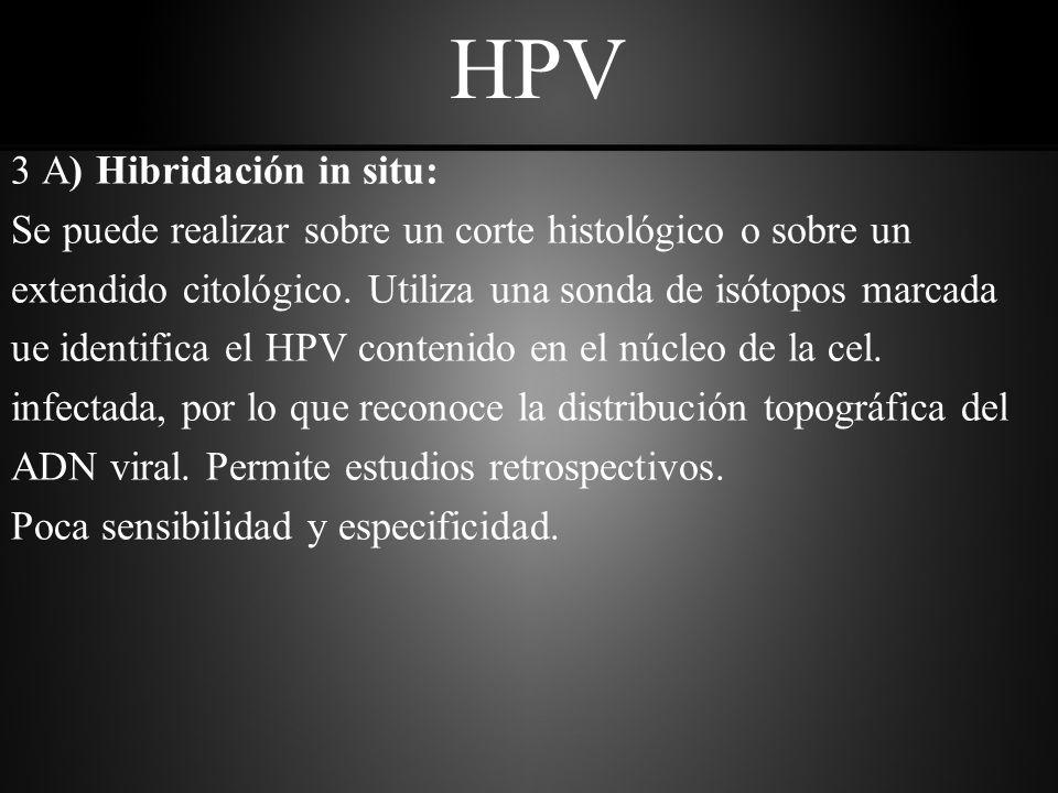 HPV 3 B) Ampliación de ácido nucleico por PCR: Esta técnica de hibridación amplifica cantidades diminutas de ADN viral especificas y luego se lo detecta por medio de hibridación con sondas.