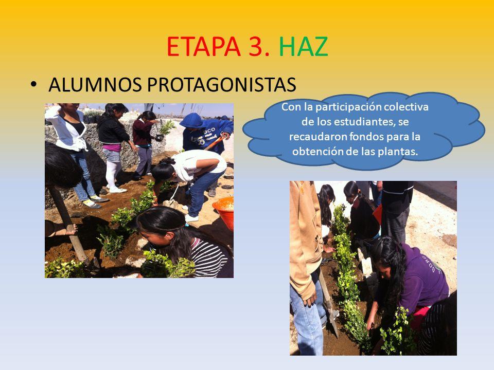 ALUMNOS, PADRES DE FAMILIA, COMUNIDAD Los alumnos aportaron la tierra de monte de la misma comunidad, con la que fue trabajada la parcela.