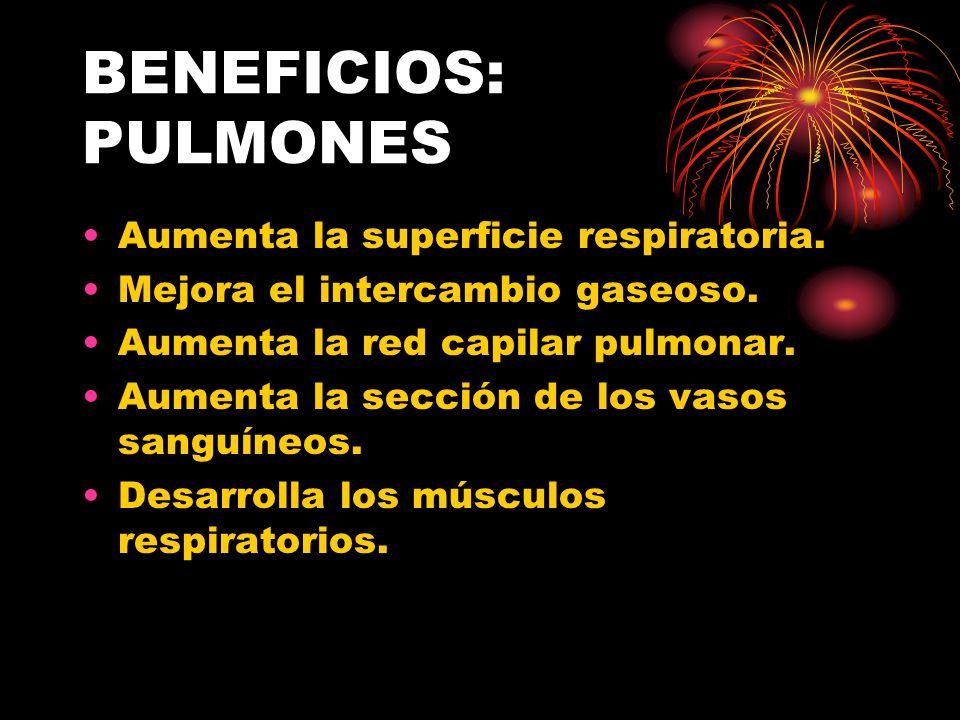 BENEFICIOS: PULMONES Aumenta la superficie respiratoria.
