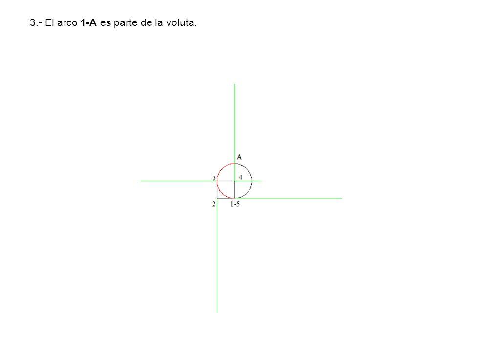 3.- El arco 1-A es parte de la voluta.