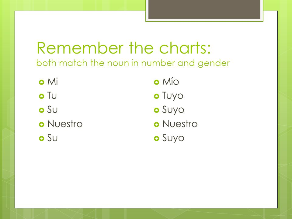 Remember the charts: both match the noun in number and gender  Mi  Tu  Su  Nuestro  Su  Mío  Tuyo  Suyo  Nuestro  Suyo