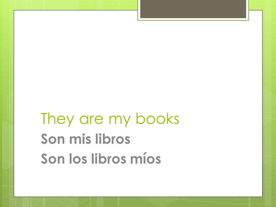 They are my books Son mis libros Son los libros míos