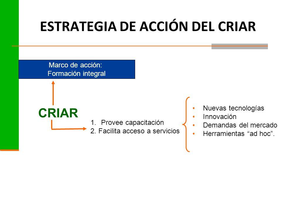 ESTRATEGIA DE ACCIÓN DEL CRIAR Marco de acción: Formación integral CRIAR 1.Provee capacitación 2.