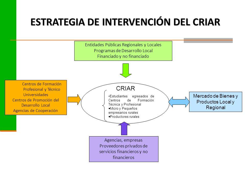 ESTRATEGIAS DE INTERVENCIÓN Conocimiento de la realidad.