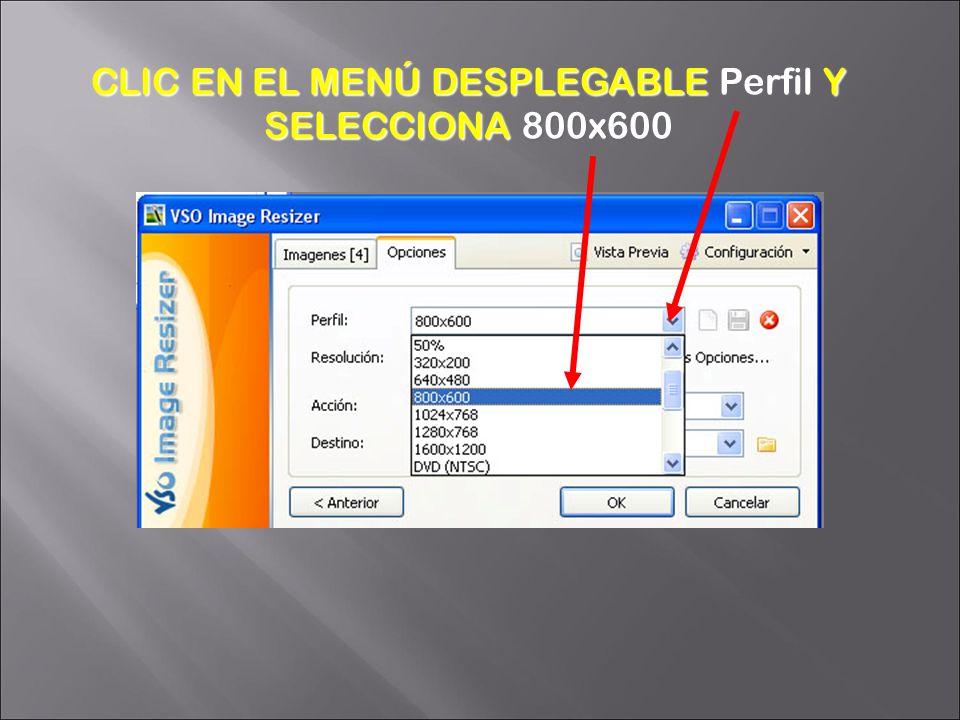 CLIC EN EL MENÚ DESPLEGABLE Perfil Y SELECCIONA 800x600