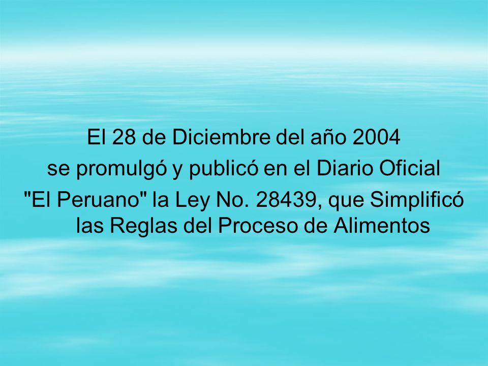 2004 de 28 de diciembre ley: