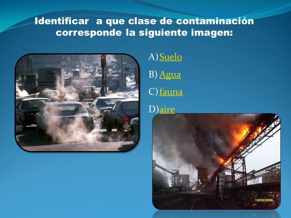 A)SueloSuelo B)AguaAgua C)AireAire D)FaunaFauna Identificar a que clase de contaminación corresponde la siguiente imagen: