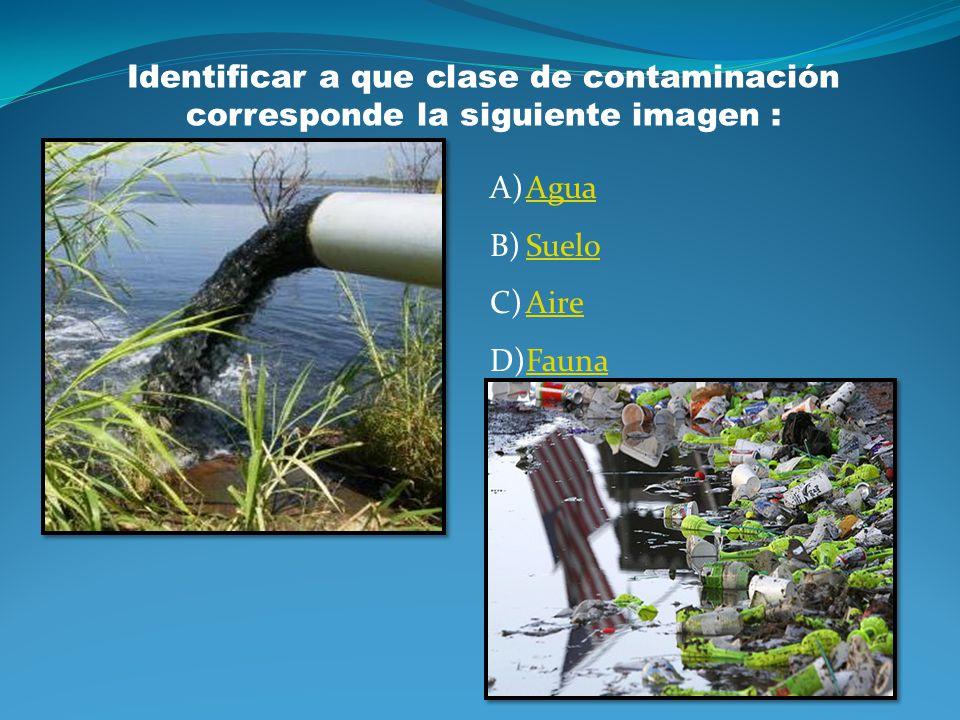 A)SueloSuelo B)AguaAgua C)faunafauna D)aireaire