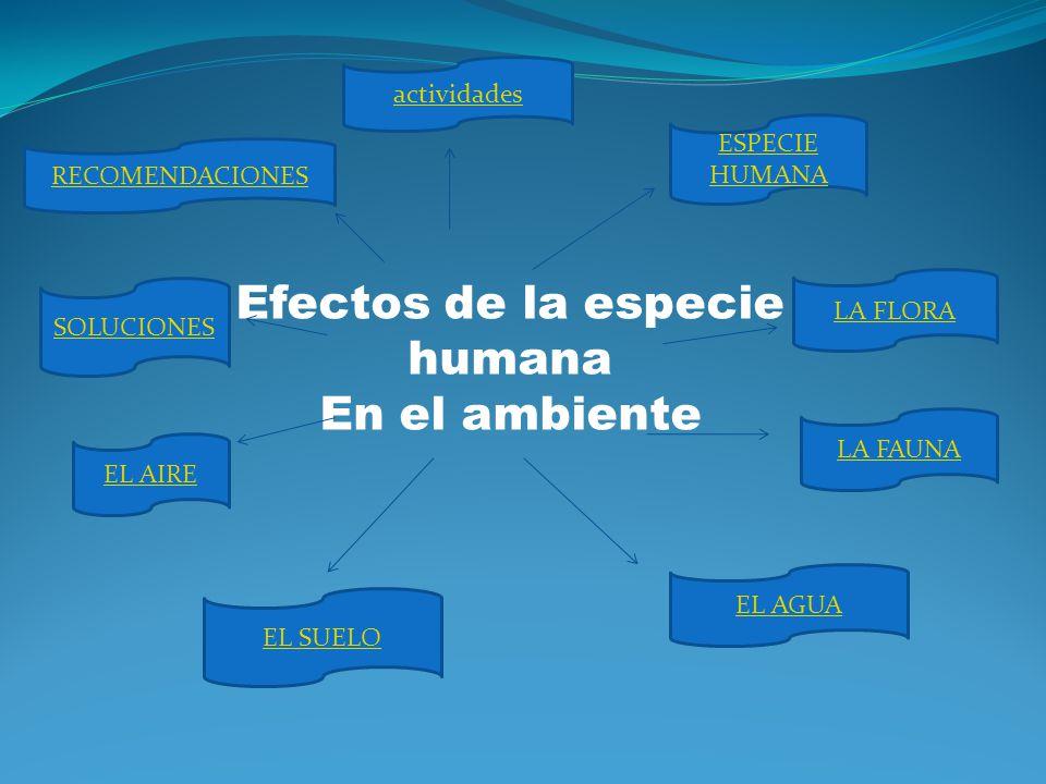 Integrantes: Jorlein Sandoval C.I.:20.511.859 Oriana Jiménez C.I.: 20.313.788 Efectos de la especie Humana En el ambiente