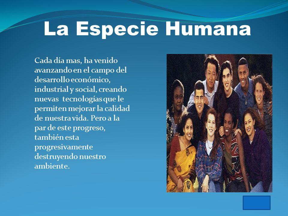 Efectos de la especie humana En el ambiente ESPECIE HUMANA LA FLORA LA FAUNA EL AGUA EL SUELO EL AIRE SOLUCIONES RECOMENDACIONES actividades