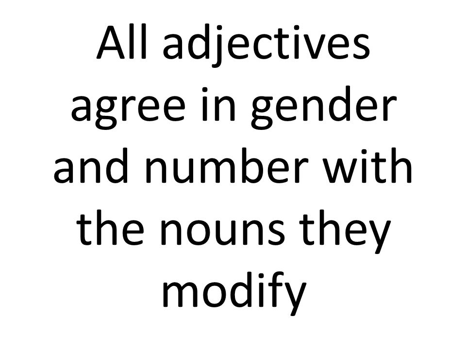 All adjectives agree in gender and number with the nouns they modify