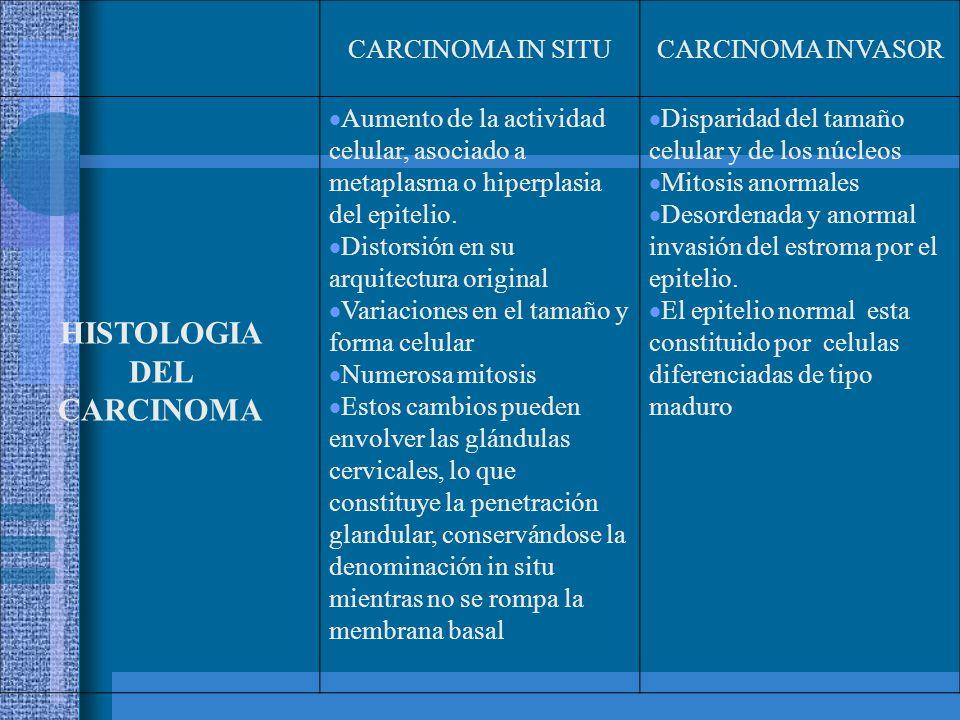 CARCINOMA IN SITUCARCINOMA INVASOR HISTOLOGIA DEL CARCINOMA  Aumento de la actividad celular, asociado a metaplasma o hiperplasia del epitelio.