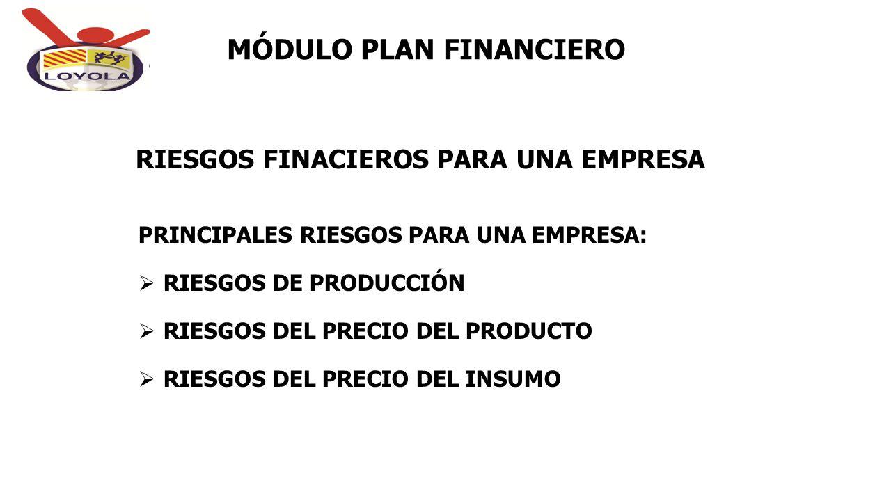 RIESGOS FINACIEROS PARA UNA EMPRESA MÓDULO PLAN FINANCIERO PRINCIPALES RIESGOS PARA UNA EMPRESA:  RIESGOS DE PRODUCCIÓN  RIESGOS DEL PRECIO DEL PROD