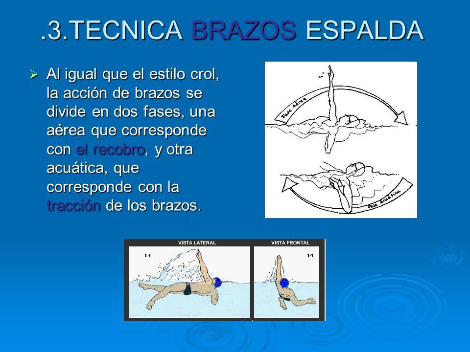 .3.TECNICA BRAZOS ESPALDA  Al igual que el estilo crol, la acción de brazos se divide en dos fases, una aérea que corresponde con el recobro, y otra acuática, que corresponde con la tracción de los brazos.