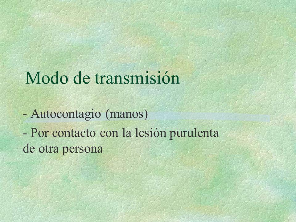 Modo de transmisión - Autocontagio (manos) - Por contacto con la lesión purulenta de otra persona