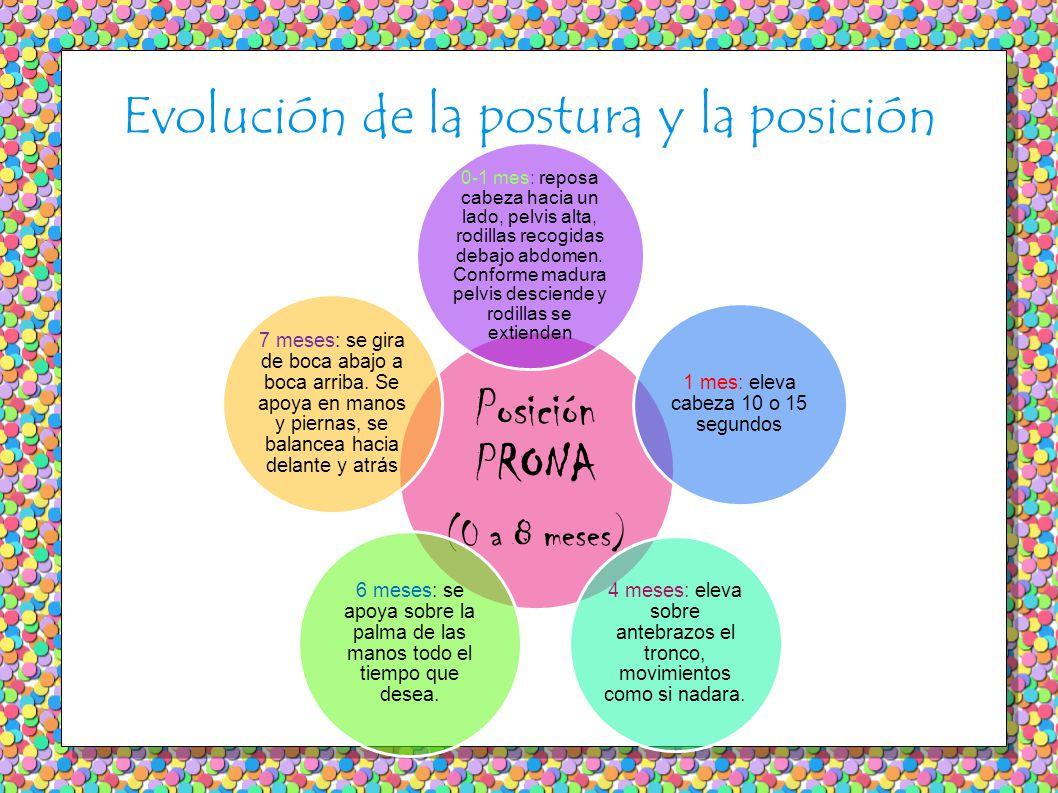 Evolución de la postura y la posición Posición PRONA (0 a 8 meses) 0-1 mes: reposa cabeza hacia un lado, pelvis alta, rodillas recogidas debajo abdome