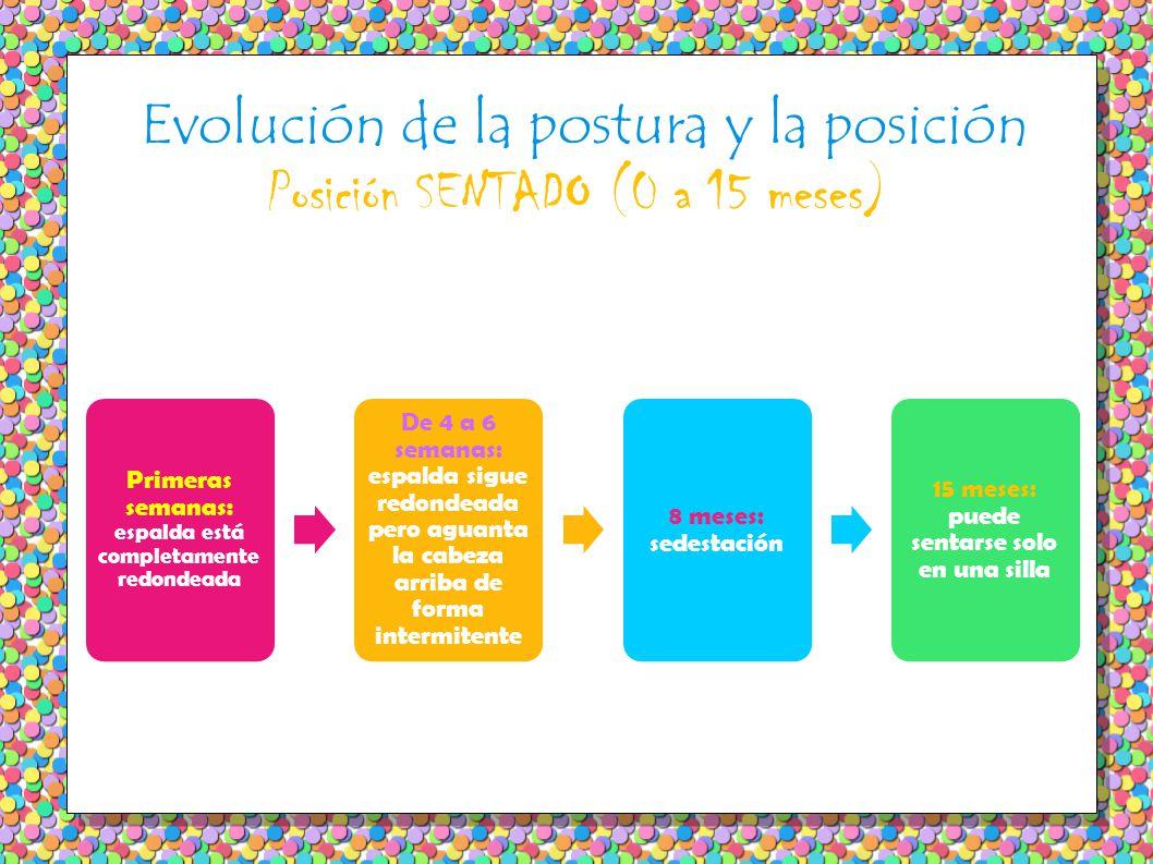 Evolución de la postura y la posición Posición SENTADO (0 a 15 meses) Primeras semanas: espalda está completamente redondeada De 4 a 6 semanas: espald