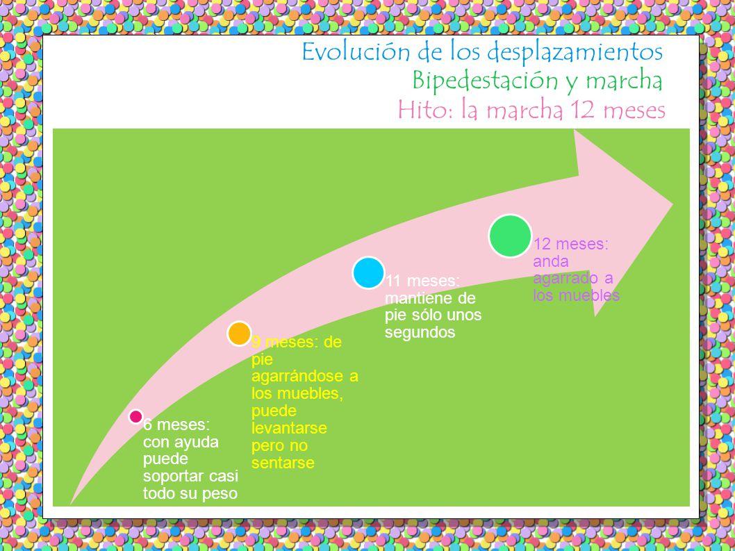 Evolución de los desplazamientos Bipedestación y marcha Hito: la marcha 12 meses 6 meses: con ayuda puede soportar casi todo su peso 9 meses: de pie a
