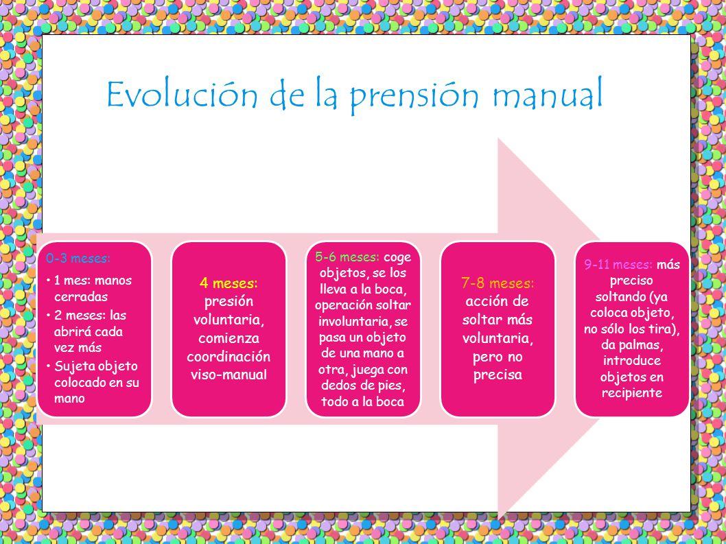 Evolución de la prensión manual 0-3 meses: 1 mes: manos cerradas 2 meses: las abrirá cada vez más Sujeta objeto colocado en su mano 4 meses: presión v
