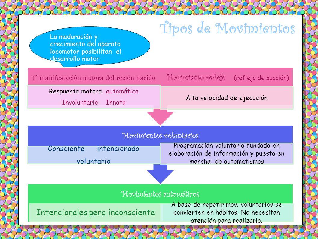 Tipos de Movimientos La maduración y crecimiento del aparato locomotor posibilitan el desarrollo motor Movimientos automáticos Intencionales pero inconsciente A base de repetir mov.